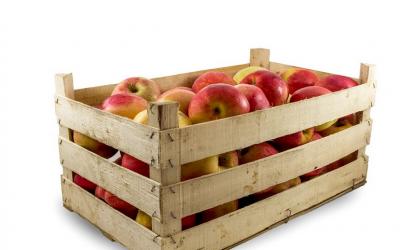Ponuda sokova od sviježe ubrane jabuke iz vlastitog voćnjaka